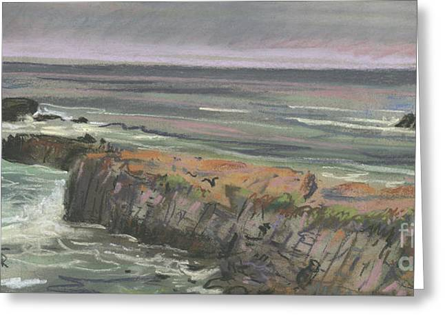 Pescadero Beach Greeting Card by Donald Maier