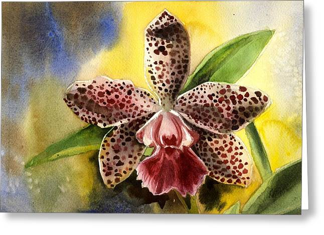 Pink Cattleya Orchid Greeting Card by Alfred Ng