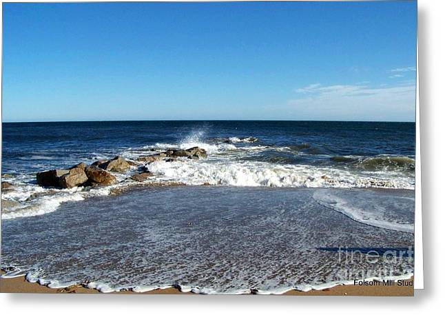 Greeting Card featuring the photograph Plum Island Landscape by Eunice Miller