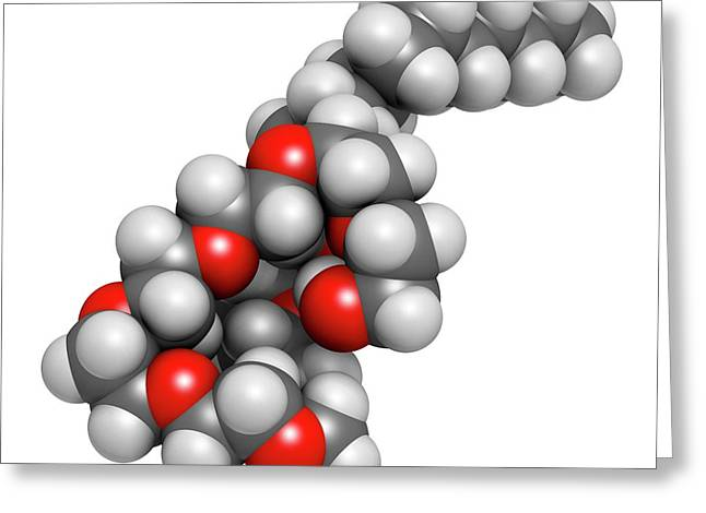 Polidocanol Sclerosant Drug Molecule Greeting Card by Molekuul