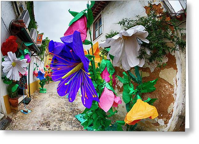 Portugal, Streets Of Tomar Decorated Greeting Card