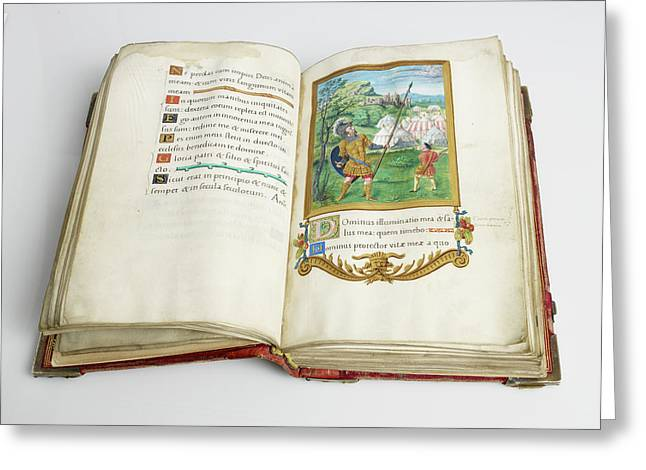 Psalter Of Henry Viii Greeting Card by British Library