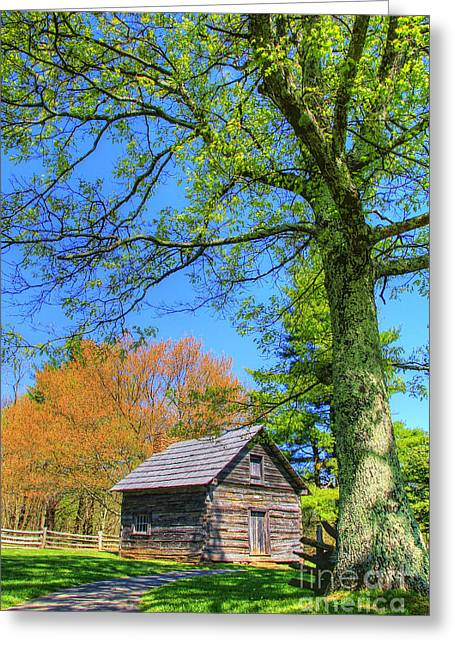 Puckett's Cabin Greeting Card by Paul Johnson