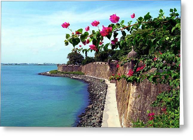Puerto Rico, San Juan, Fort San Felipe Greeting Card by Miva Stock