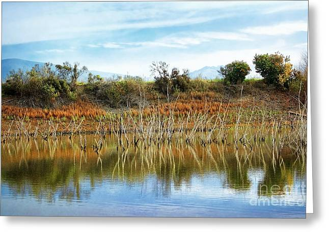 Quarry Lakes Greeting Card by Ellen Cotton