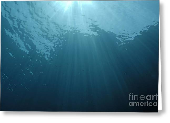 Rays Of Sunlight Shining Into Water Greeting Card by Sami Sarkis