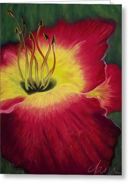 Red Day Lily Greeting Card by Dana Strotheide