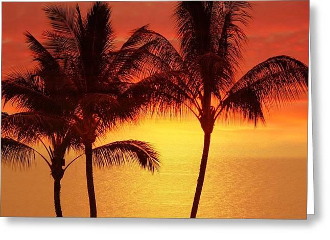 Red Sunset. Greeting Card by Athala Carole Bruckner