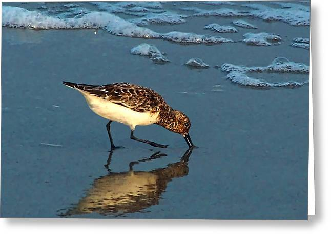 Reflection At Sunset Greeting Card by Sandi OReilly