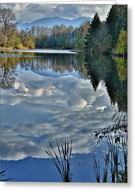 Reflections Of Autumn Greeting Card by Mary Jo Allen