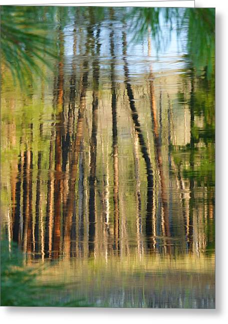 Reflections On The River Greeting Card
