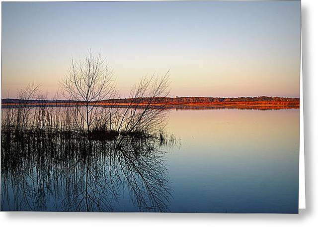 Reflections On Lake Jackson Tallahassee Greeting Card by Paul  Wilford