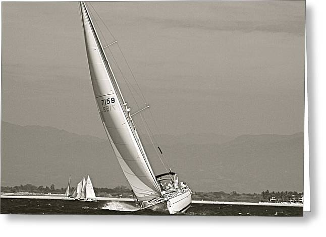 Greeting Card featuring the photograph Regatta by Nicola Fiscarelli