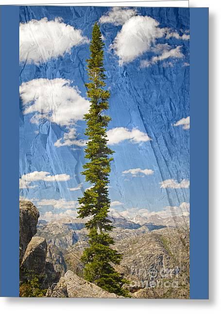 Rugged Wind River Range - Where Solitude Rules Greeting Card by John Stephens
