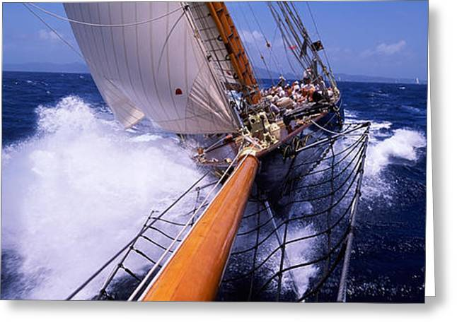Sailboat In The Sea, Antigua, Antigua Greeting Card by Panoramic Images