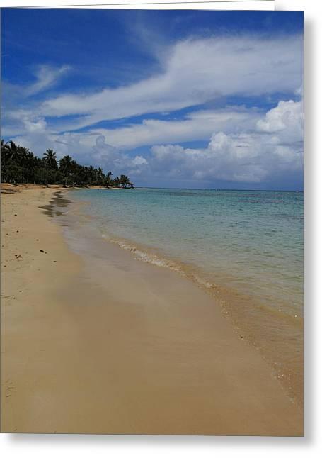 Samana Dominican Republic Beach Greeting Card by Andrei Filippov