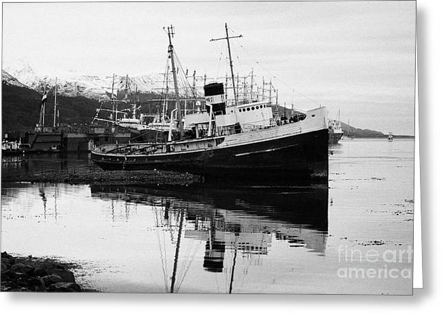 san cristobal saint christopher tugboat wreck in Ushuaia Argentina Greeting Card