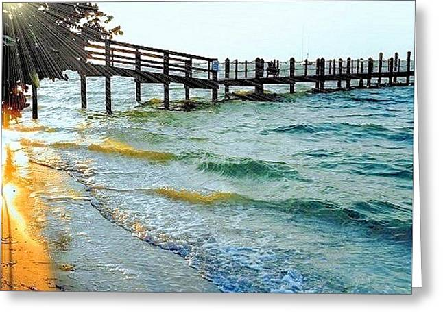 Greeting Card featuring the photograph Sanibel At Sunset by Janette Boyd