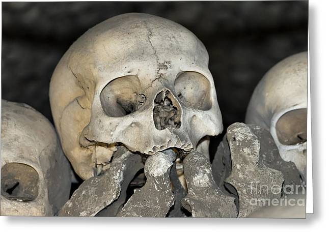 Sedlec Ossuary - Charnel House Greeting Card by Michal Boubin
