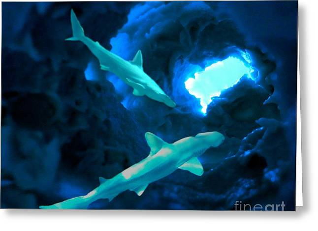 Greeting Card featuring the mixed media Shark Cave by Steed Edwards
