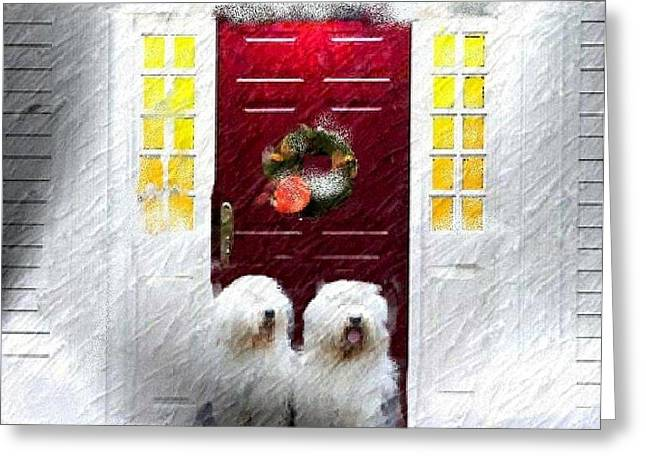 2 Sheepdogs Greeting Card