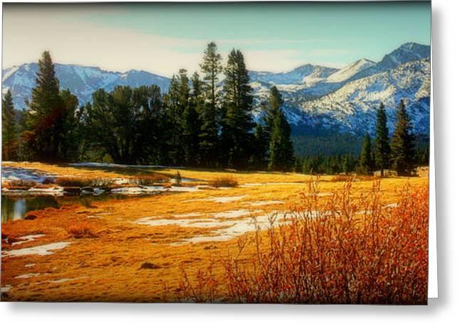Sierra Panorama Greeting Card by Lynn Bawden
