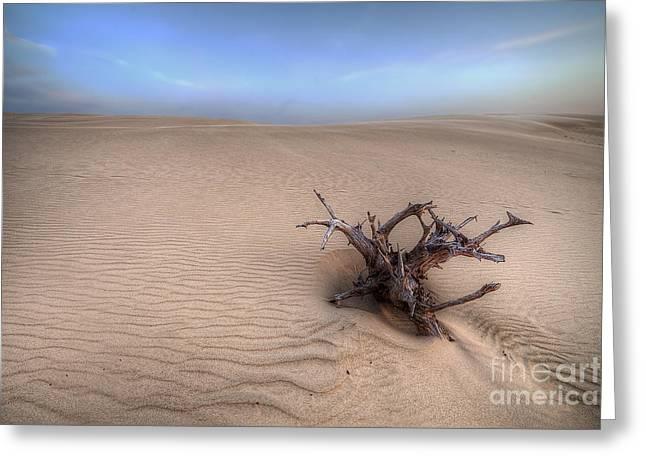 Silver Lake Sand Dunes Greeting Card