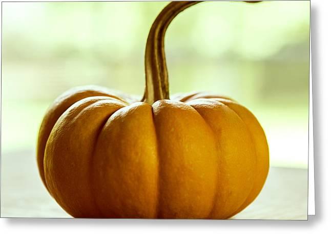 Small Orange Pumpkin Greeting Card by Iris Richardson