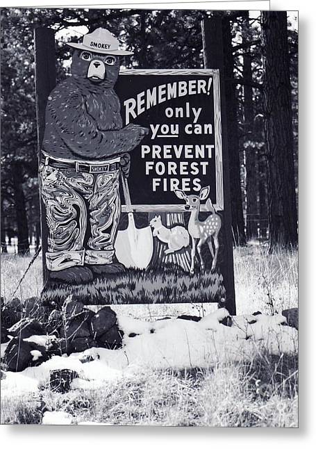 Smokey The Bear Greeting Card