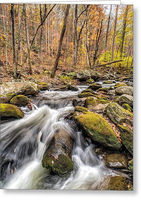 Smoky Mountain Stream 2 Greeting Card