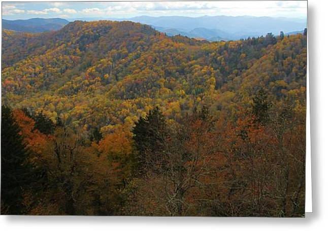 Smoky Mountains In Autumn Greeting Card by Dan Sproul