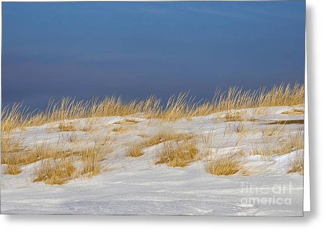 Snow Covered Dunes Greeting Card by Twenty Two North Photography
