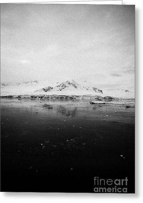 snow covered landscape in Fournier Bay on Anvers Island Antarctica Greeting Card by Joe Fox