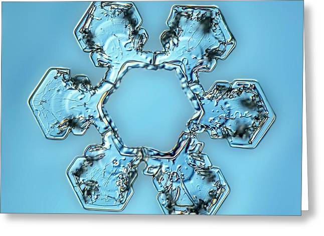 Snowflake Crystal Greeting Card by Gerd Guenther