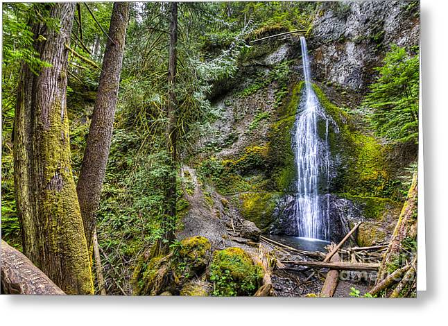 Sol Duc Falls Greeting Card by Twenty Two North Photography
