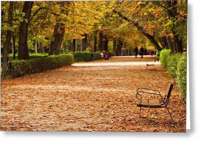 Spain, Madrid, Parque Del Buen Retiro Greeting Card by Walter Bibikow