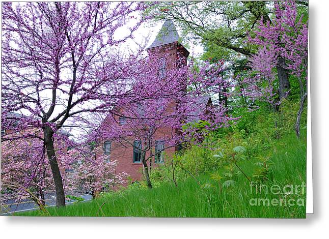 Spring Colors Greeting Card by Edward Sobuta