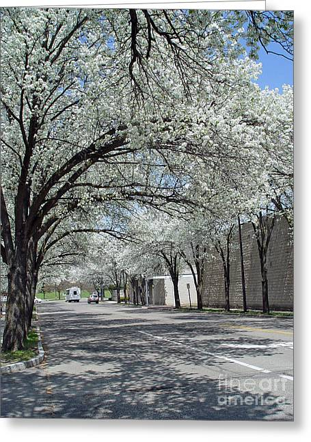 Springtime Corning Ny 3 Greeting Card