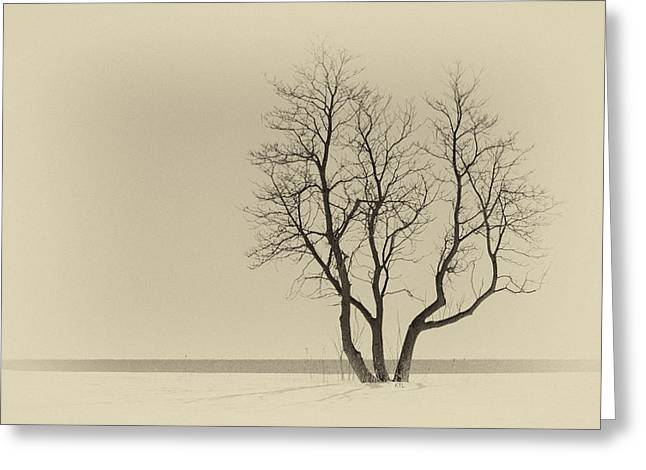 Stands Alone Greeting Card by Karol Livote