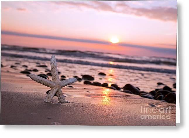 Starfish On The Beach At Sunset Greeting Card by Michal Bednarek