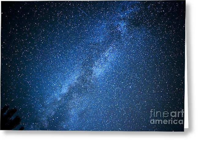 Stars Over Appalachian Mountains Greeting Card by Thomas R Fletcher