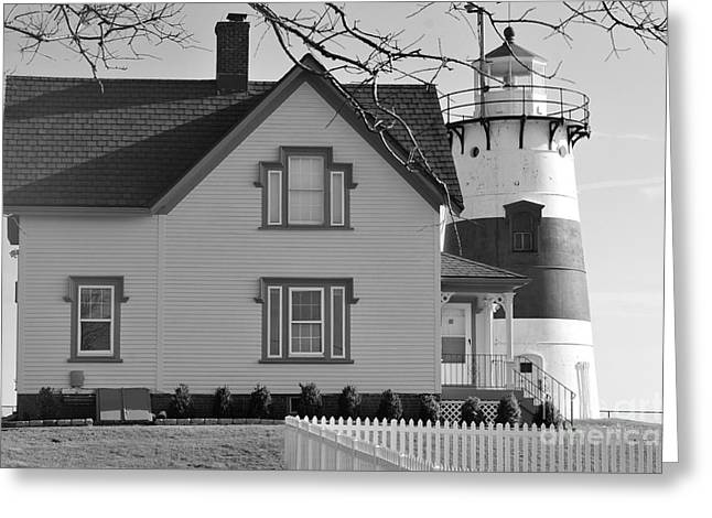 Startford Point Light 2 Greeting Card by Catherine Reusch Daley