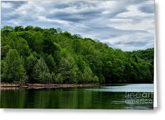 Stonewall Jackson Lake Wildlife Management Area Greeting Card by Thomas R Fletcher