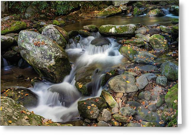 Stream Flowing Through Rocks Greeting Card by Panoramic Images