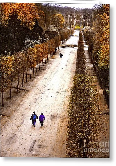 Strolling Versailles Greeting Card by Barbara D Richards