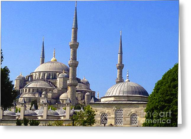 Sultanahmet Camii Blue Mosque Istanbul Turkey Greeting Card by Ralph A  Ledergerber-Photography
