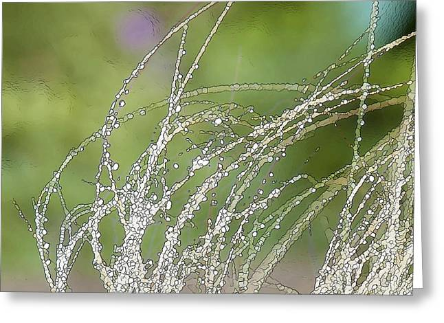 Summer Grass Greeting Card by Artist and Photographer Laura Wrede