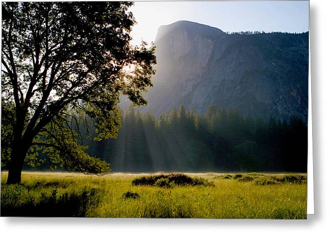 Summer Sunrise In Yosemite Valley Greeting Card
