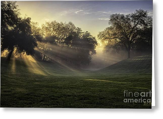 Sunrise Among The Oaks Greeting Card