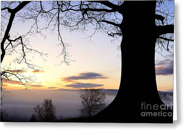 Sunrise And Fog Greeting Card